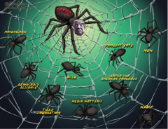 soros web